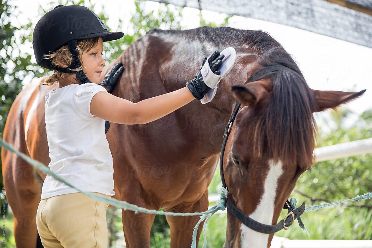 Кто ухаживает за конями