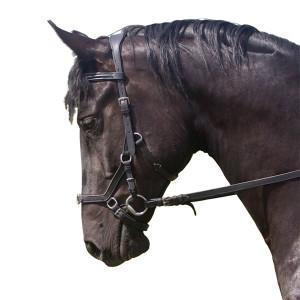 Уздечка Рэмбо-Миклема купить в интернет магазине конной амуниции