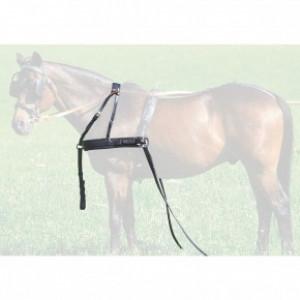 Шорка для двухместной упряжи купить в интернет магазине конной амуниции
